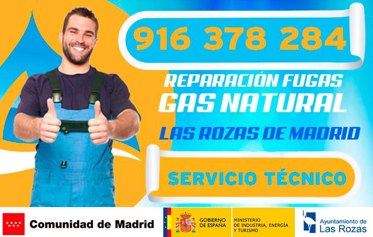 reparación de fugas de gas natural en las rozas de madrid